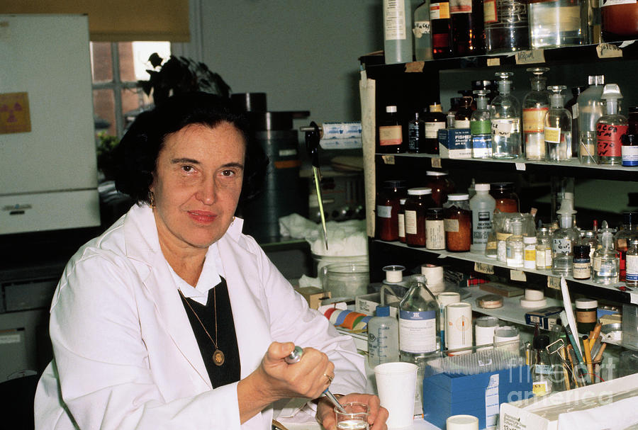 Dr. Rosalyn Yalow Working Photograph by Bettmann