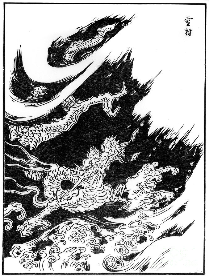 Dragon, 15th Century 1886 Drawing by Print Collector