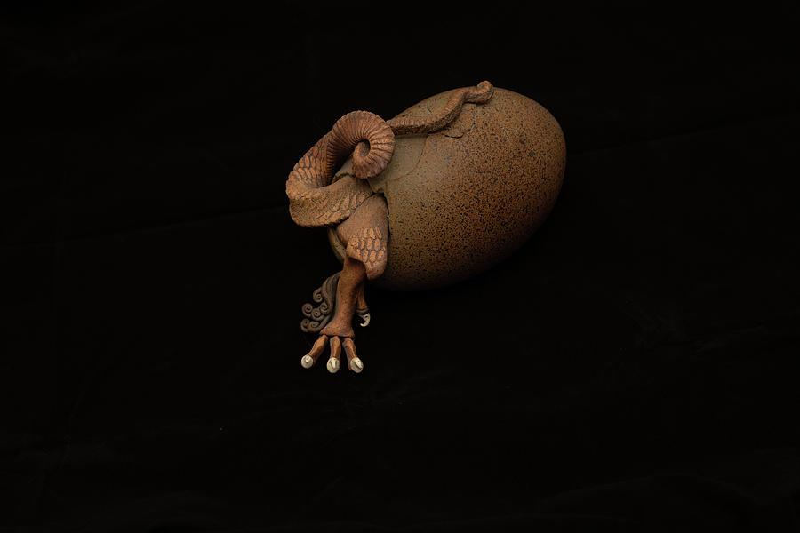 Dragon Egg Hatching by Darryl Brooks