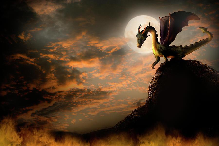Dragon On A Rock Digital Art by -asi