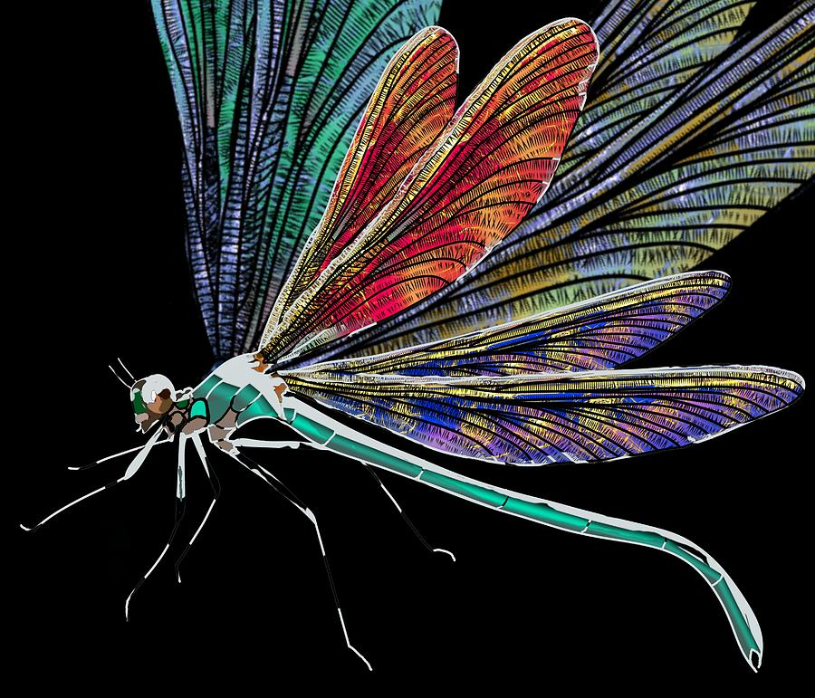 DragonFly Multi Wing by Joan Stratton