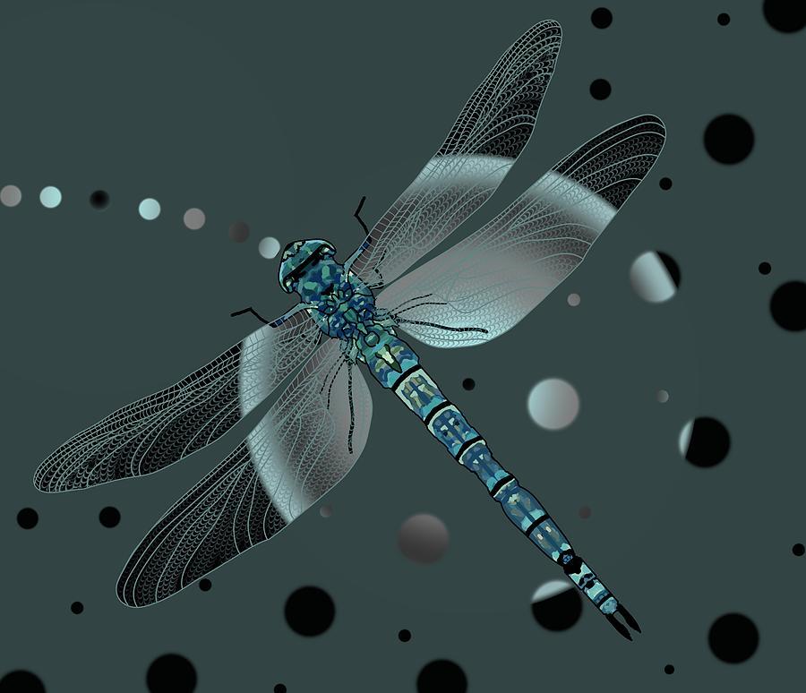 Dragonfly Odyssey by Joan Stratton