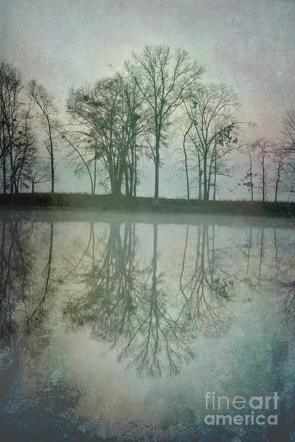 Dramatic Reflection by Ken Johnson