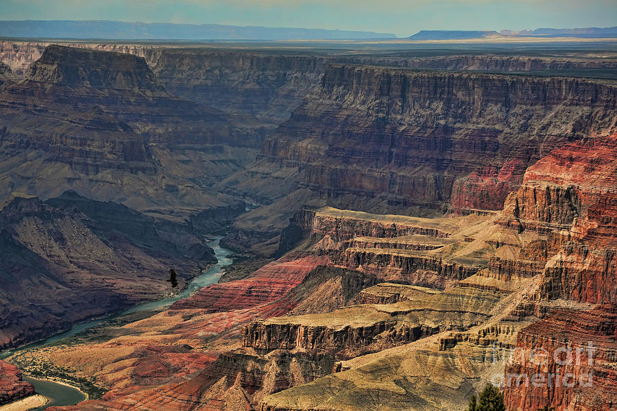 Dramatic View Grand Canyon  by Chuck Kuhn