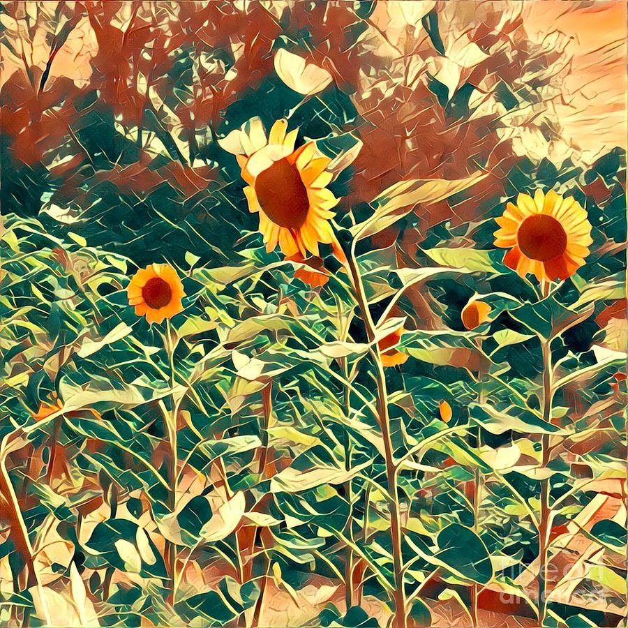 Sunflowers Digital Art - Dream of Sunflowers by Karen Francis