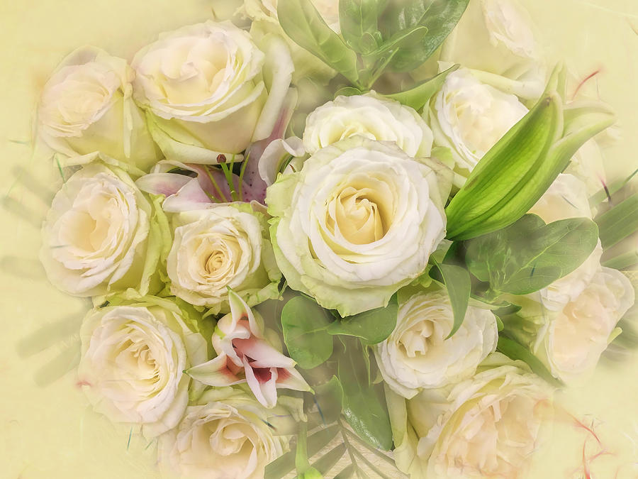 Roses For Sale Near Me >> Dreaming Of Yellow Roses