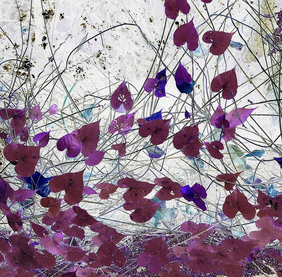 Dreamscape by John Hintz