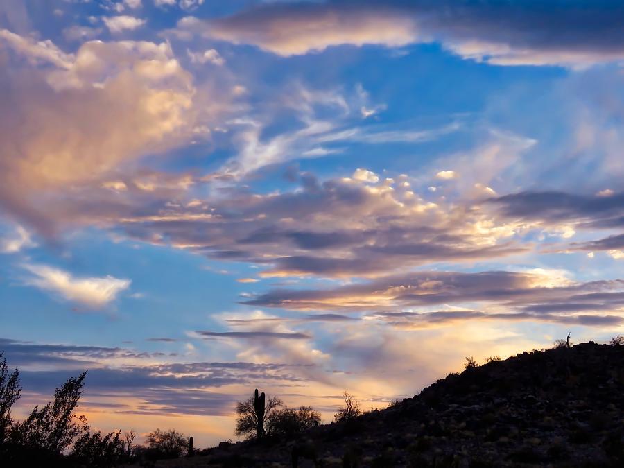 Dreamy Desert Sunset by Judy Kennedy