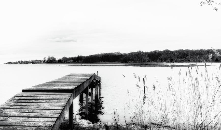 Dreamy Dock in Black and White by Marianne Campolongo