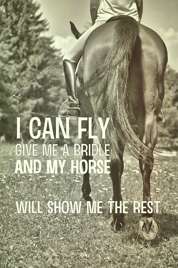 Horse Photograph - Dressage In The Daisies Quote by JAMART Photography