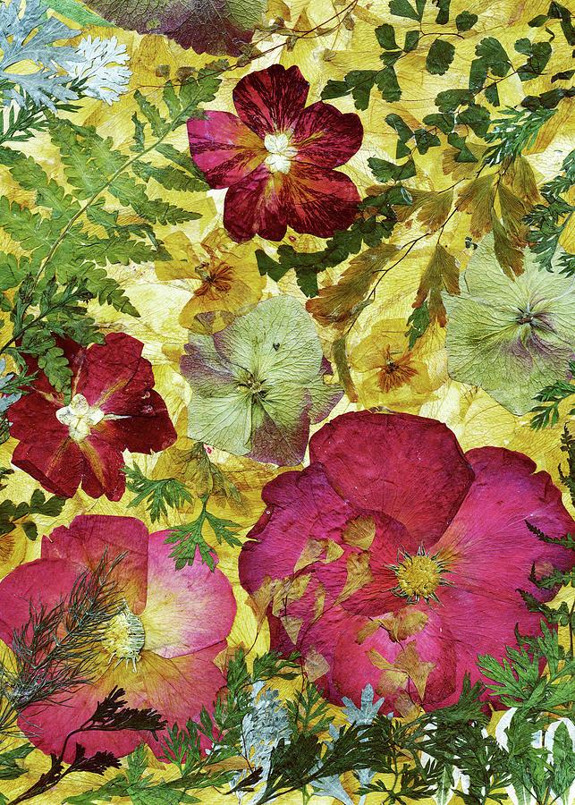 Roses Painting - Dried Flowers 28 by Dryflowersart