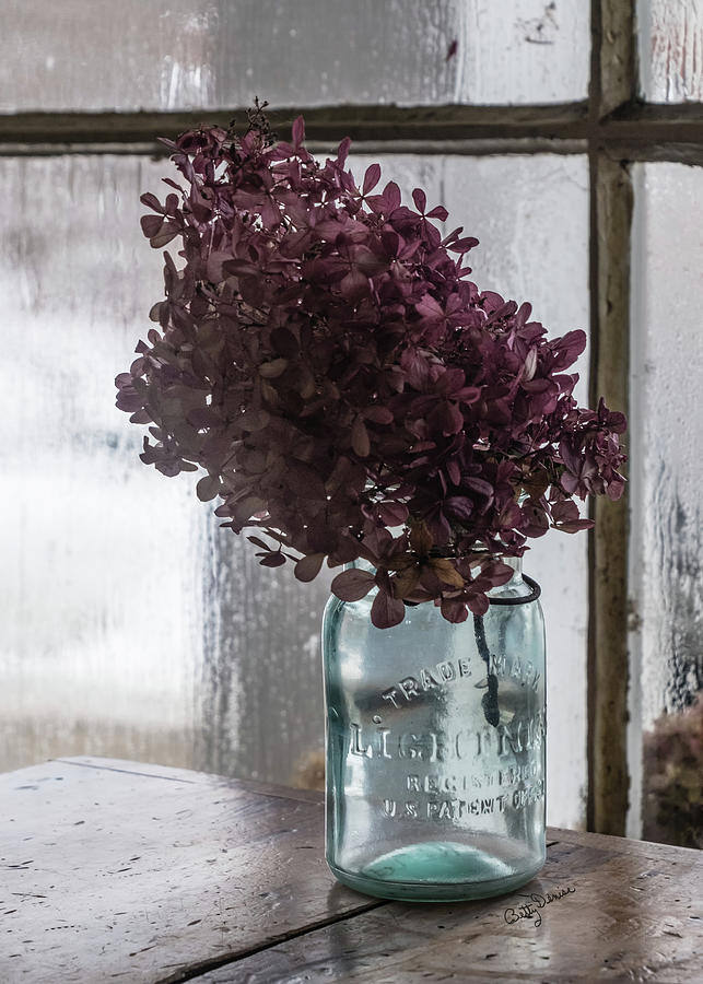 Dried Hydrangea in a Jar by Betty Denise