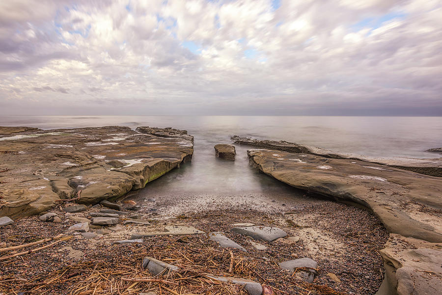Driftwood and Stone by Joseph S Giacalone