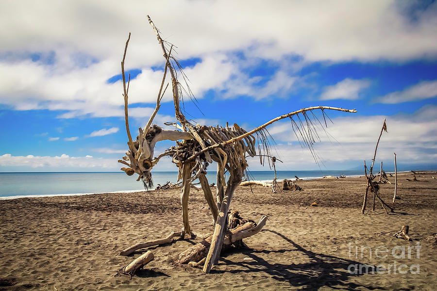 Driftwood Artwork on Hokitika Beach, New Zealand by Lyl Dil Creations