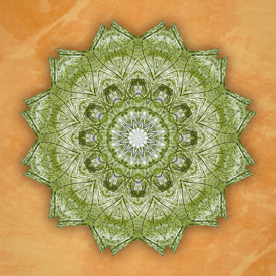 Driftwood Lace Mandala by Martha Miller