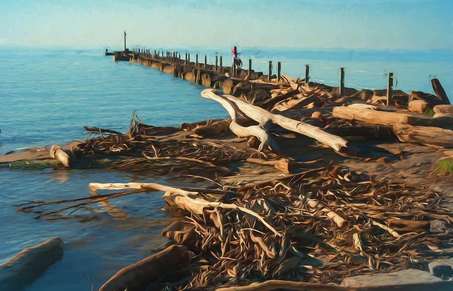 Driftwood Photograph - Driftwood Washed On Shore by Anthony Paladino
