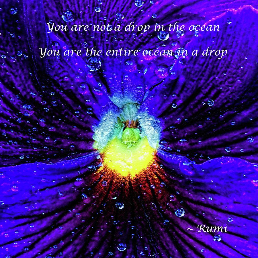 Drop in the ocean by Gaye Bentham