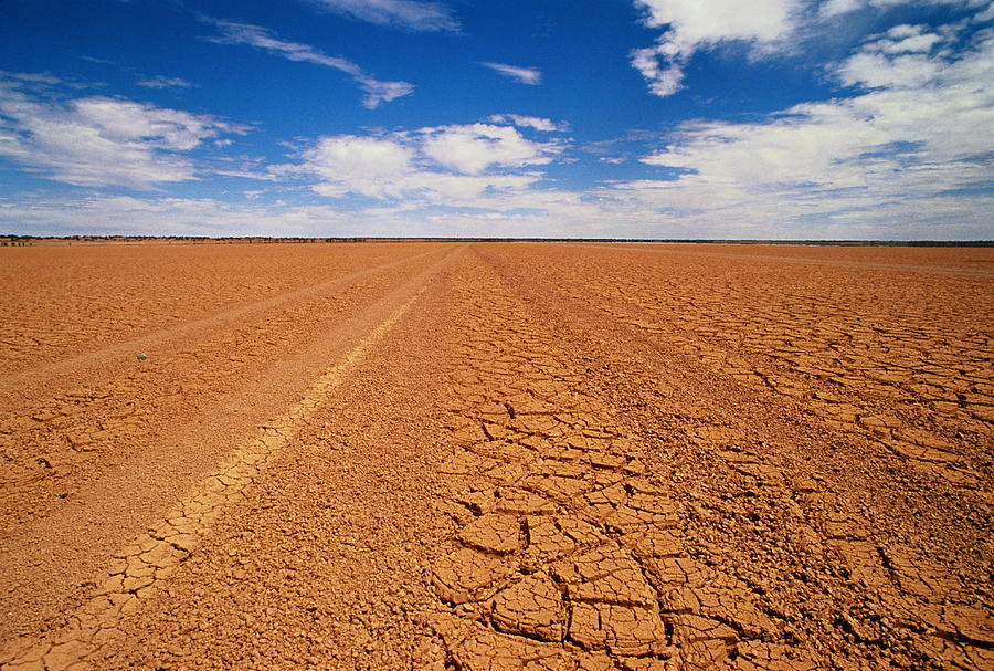 Drought Landscape, Northern Territory Photograph by Oliver Strewe