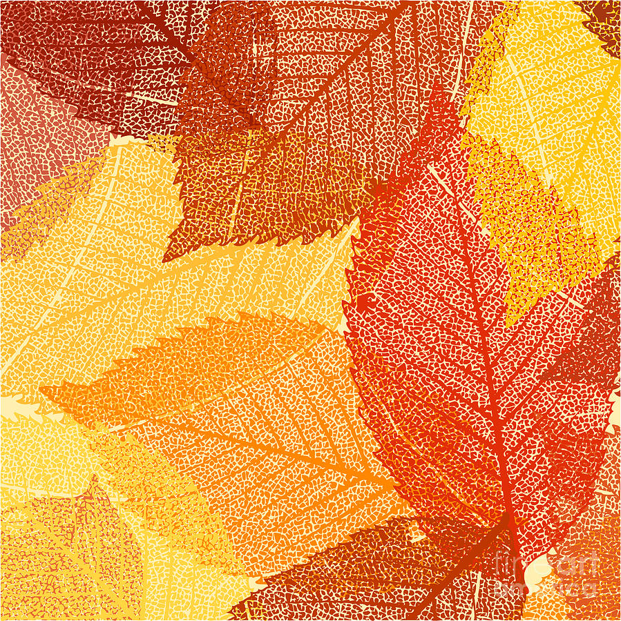 Forest Digital Art - Dry Autumn Leaves Template. Eps 8 by Eliks