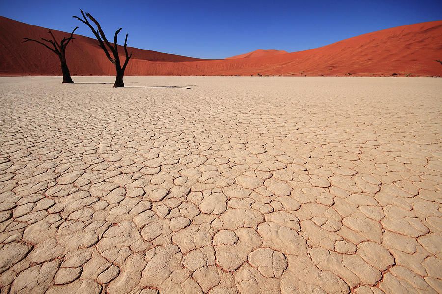 Dry Pan Of Deadvlei Plus Two Dead Trees Photograph by Klaus Brandstaetter