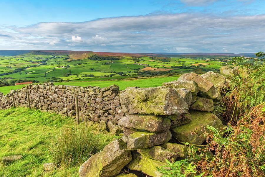 Danby Photograph - Drystone wall, Danby, North York Moors by David Ross