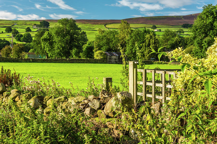 Reeth Photograph - Drystone Wall, Reeth, Yorkshire Dales by David Ross