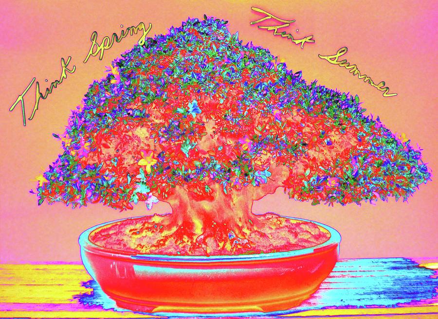 Text Digital Art - _dsc0160 (4) by Tom Kelly