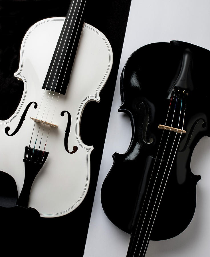 Violin Photograph - Dual Violins In Black And White  by Garry Gay
