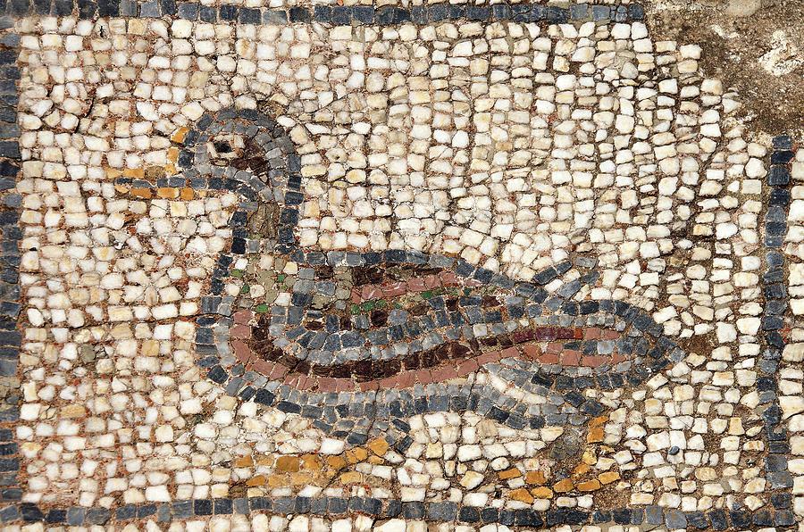 Duck Mosaic Photograph