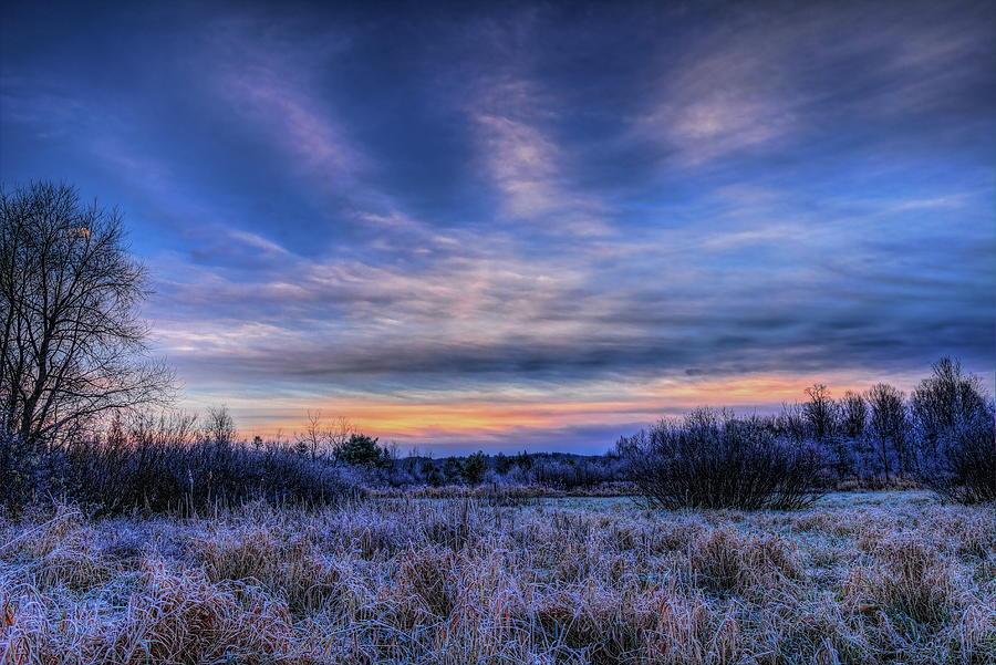 Duck Pond Dawn by Dale Kauzlaric