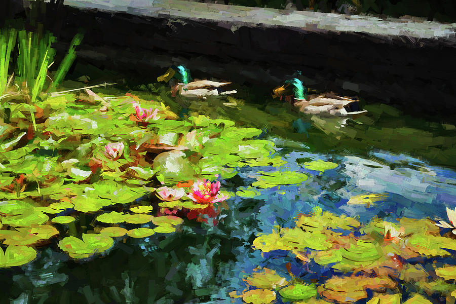 Ducks on a Lily Pond 9 by Mike Penney