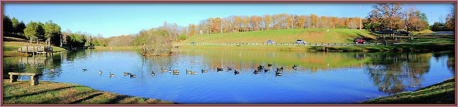 Ducks On A Peaceful Pond Photograph