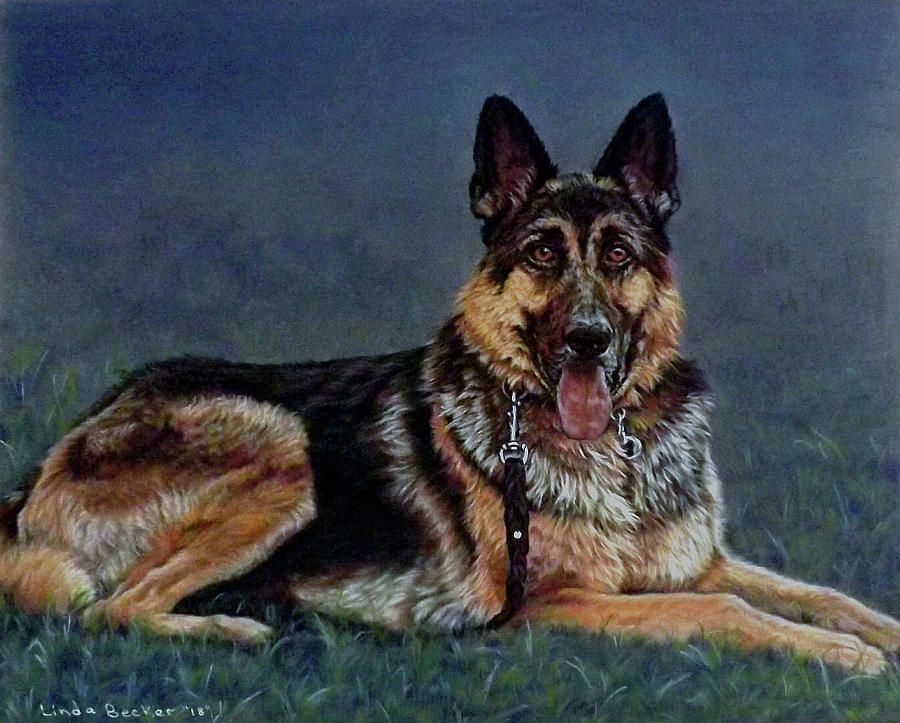 Duke by Linda Becker