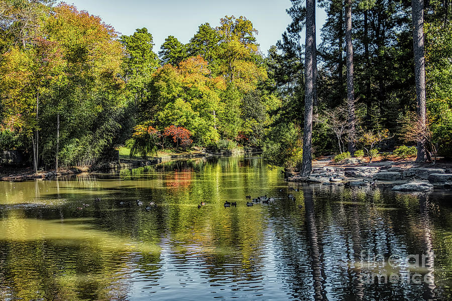 Duke Pond by James Foshee