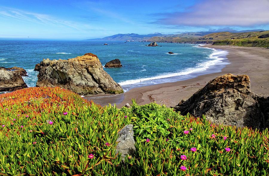 Duncans Landing on the Sonoma Coast by Carolyn Derstine