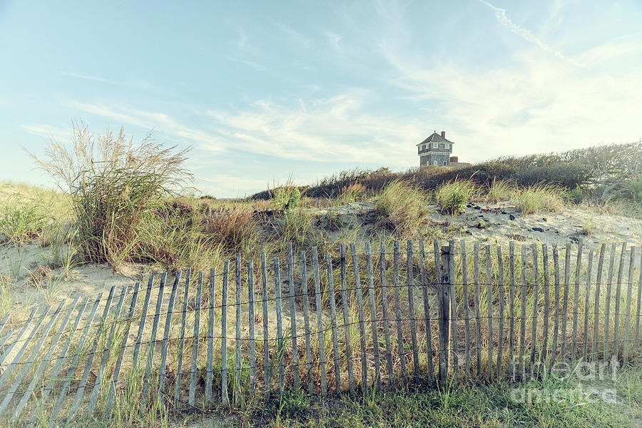 Dune Fence and Grass by Debra Fedchin