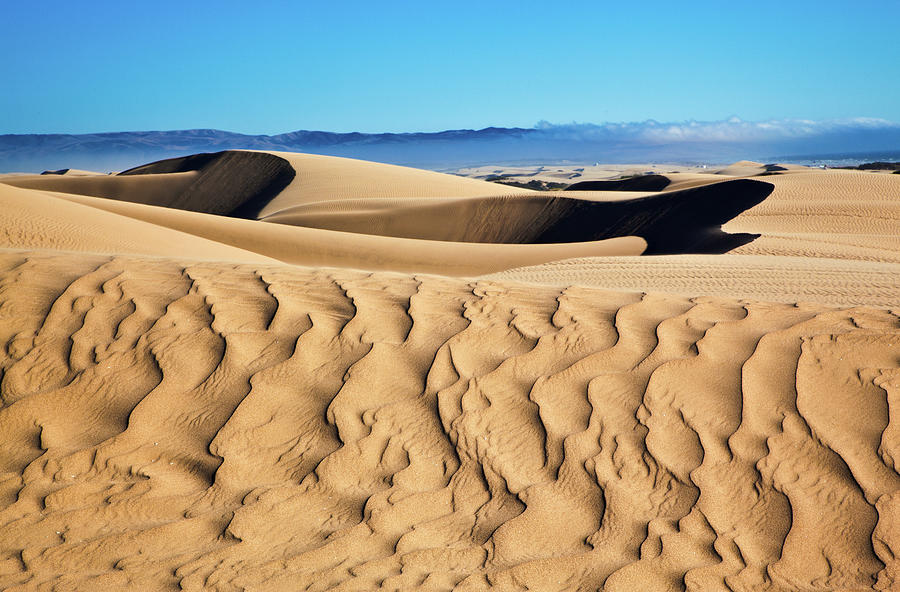 Dune Patterns Photograph by Mimi Ditchie Photography