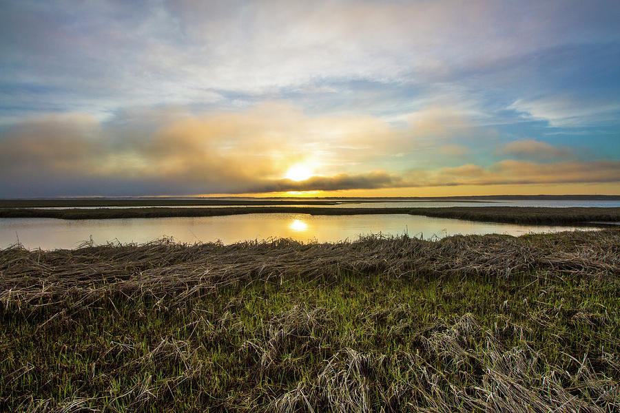 Dune Road Wetlands Sunset by Robert Seifert