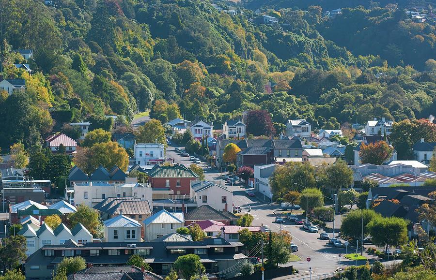 Dunedin Photograph by Jill Ferry