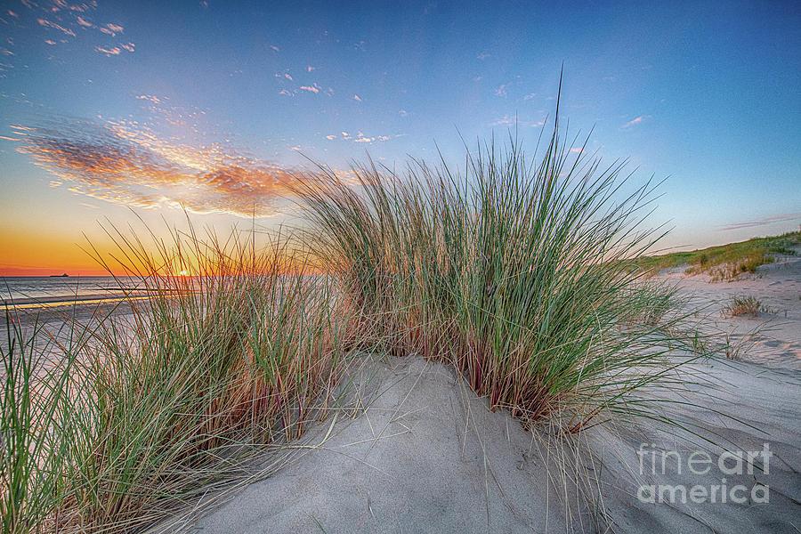 Dunes 2019 by Alex Hiemstra