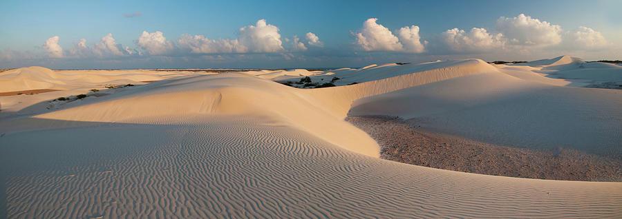 Dunes Photograph by Alex Martin Ros