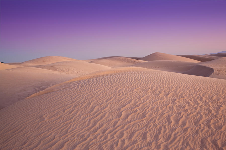Dunes At Dusk Photograph by Mimi Ditchie Photography