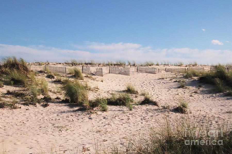 Dunes At Robert Moses by Karen Silvestri