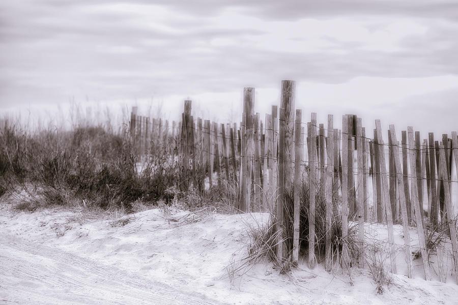 Dunes by Van Sutherland