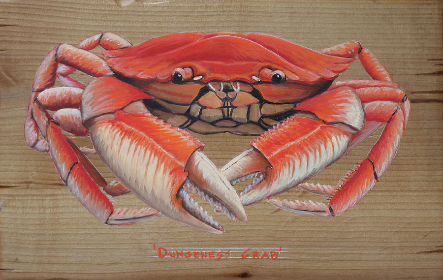 Dungeness Crab by Kevin Hughes