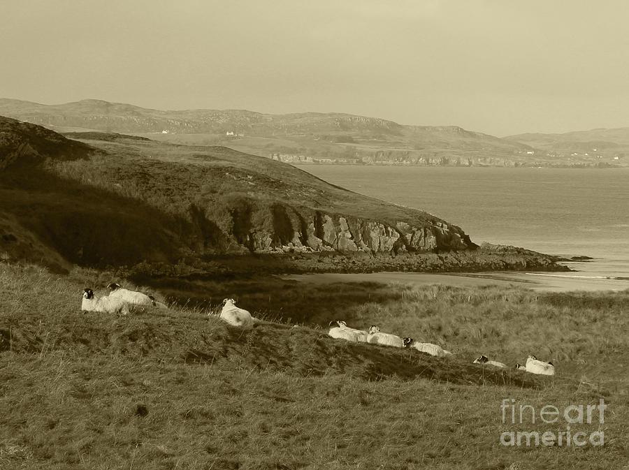Dunree Coastline Tint by Eddie Barron