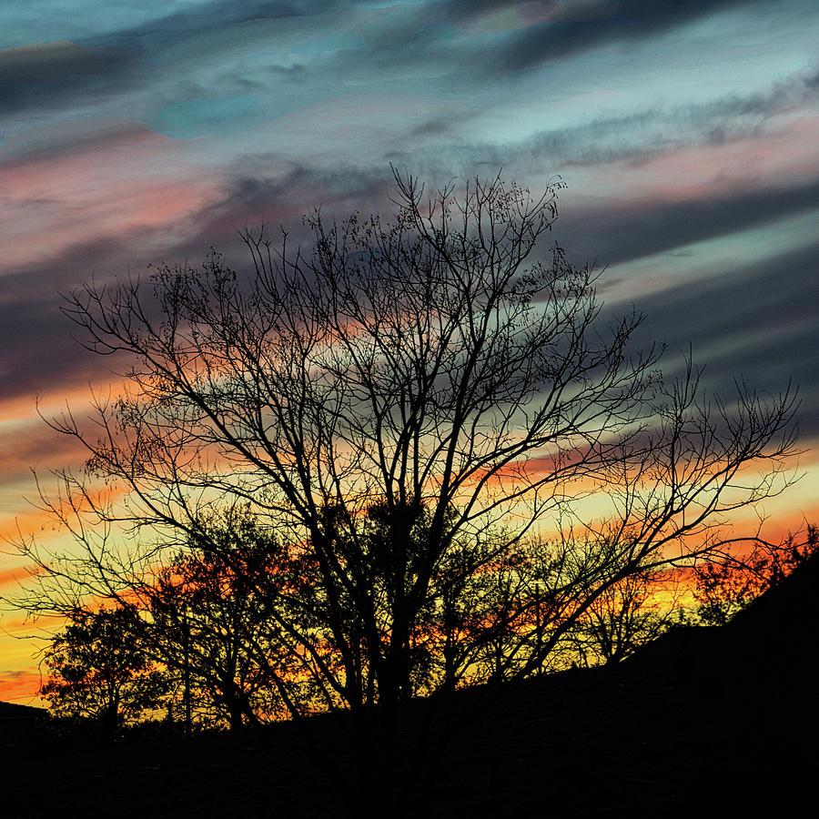 Landscape Photograph - Dusk Silhouette by Michael Briley