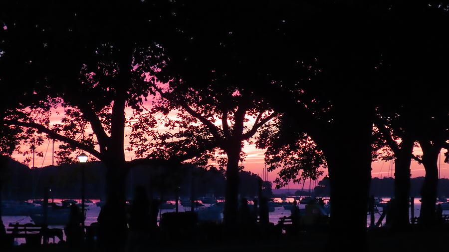 Dusk Sky on the Harbor by SJ Lindahl