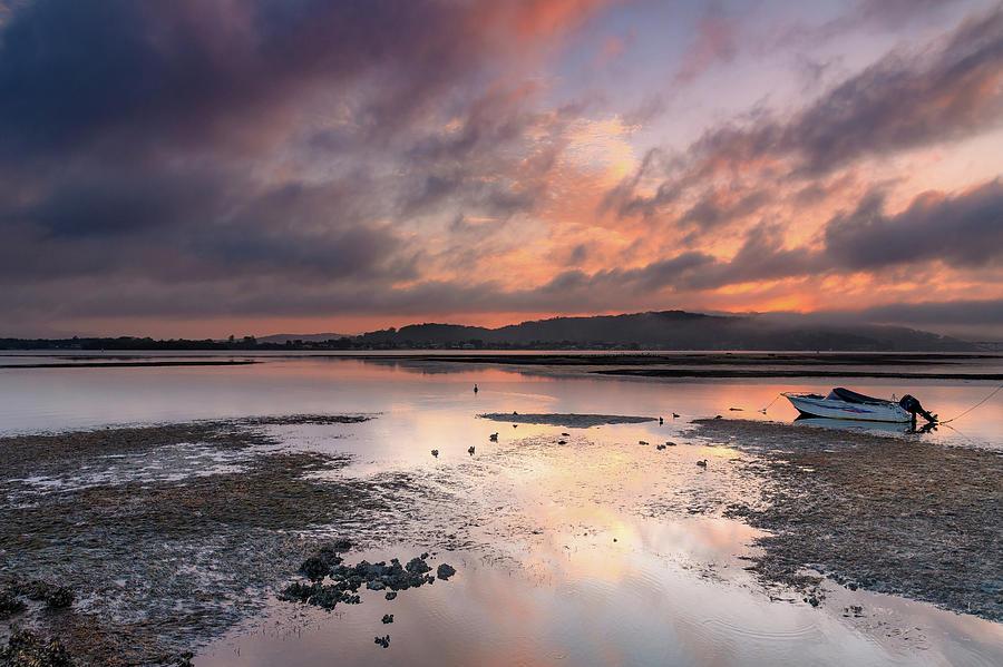 Australia Photograph - Dusky Pink Sunrise Bay Waterscape by Merrillie Redden