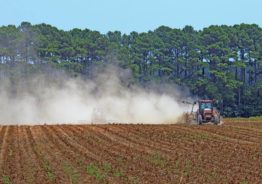 Dust Farming by Karl Ford